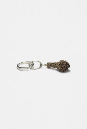 Early pine cone keyring